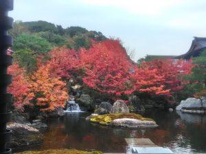 京都日本庭園